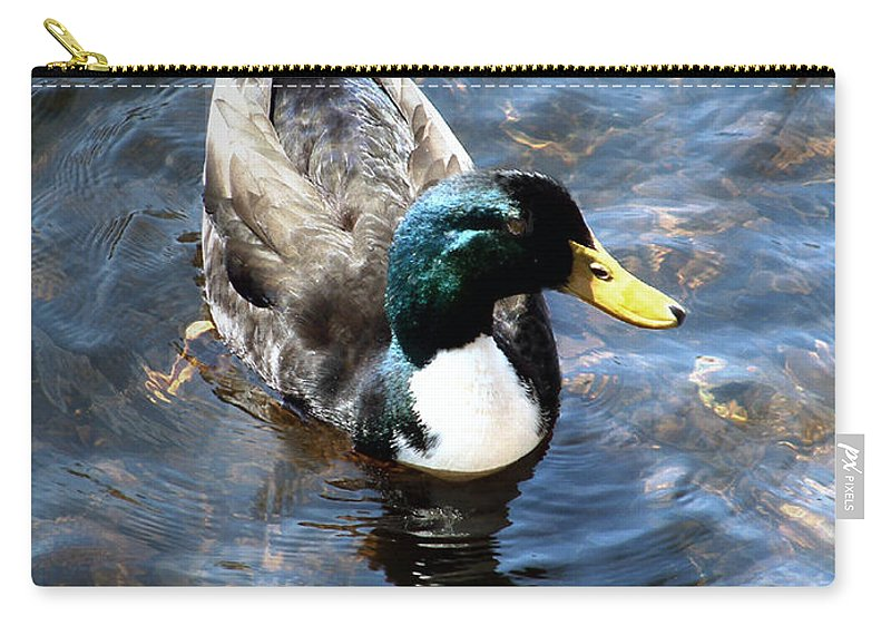Drake Carry-all Pouch featuring the photograph Paddling Peacefully by RC DeWinter