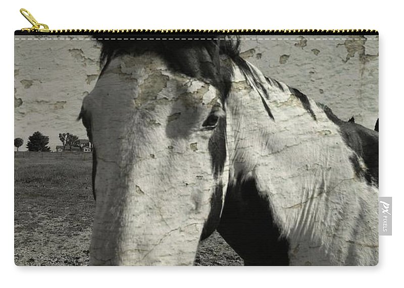 Horse Carry-all Pouch featuring the photograph Paint by Darlyn Shenold