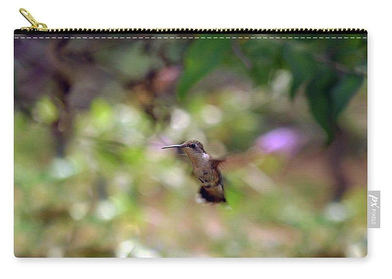 Hummingbird Carry-all Pouch featuring the photograph Painted Background by Lori Tambakis