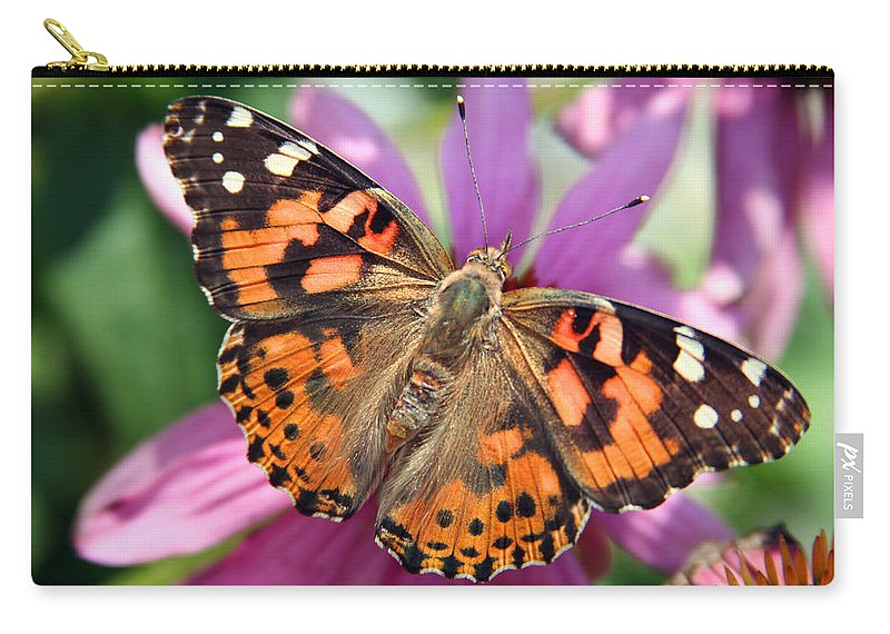 Painted Lady Carry-all Pouch featuring the photograph Painted Lady Butterfly by Margie Wildblood