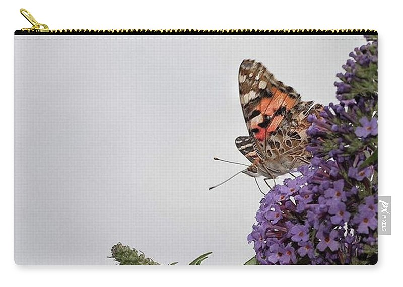 Insectsofinstagram Carry-all Pouch featuring the photograph Painted Lady (vanessa Cardui) by John Edwards