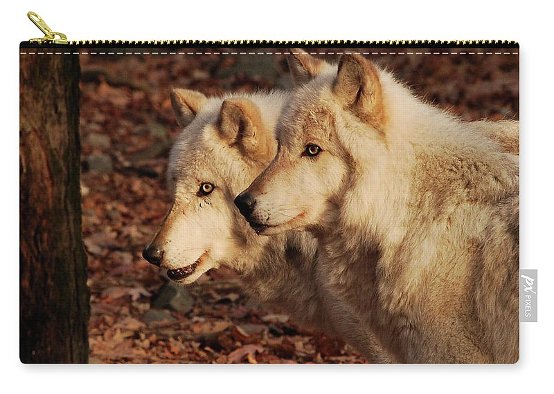 Wolf Carry-all Pouch featuring the photograph Pair Of Beauties by Lori Tambakis