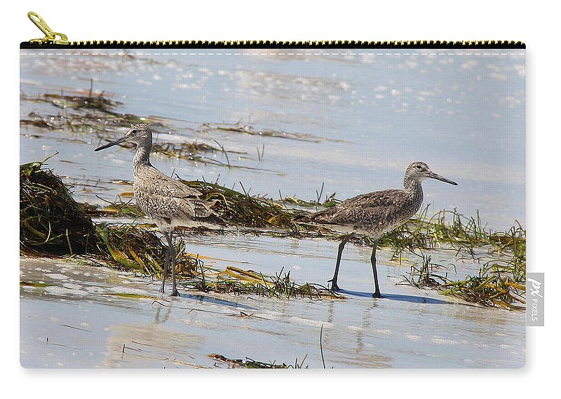 Willets Carry-all Pouch featuring the photograph Pair Of Willets by Barbara Bowen