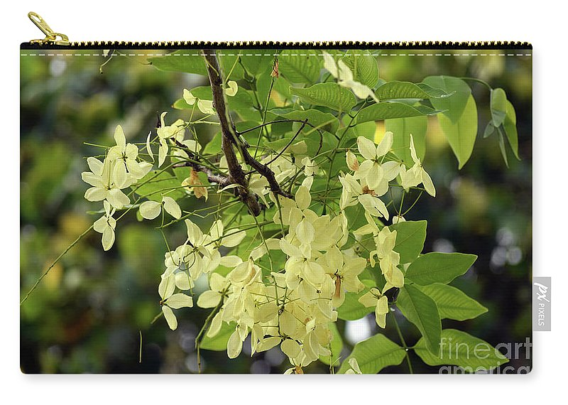 Flowers Carry-all Pouch featuring the photograph Pale And Delicate by William Tasker