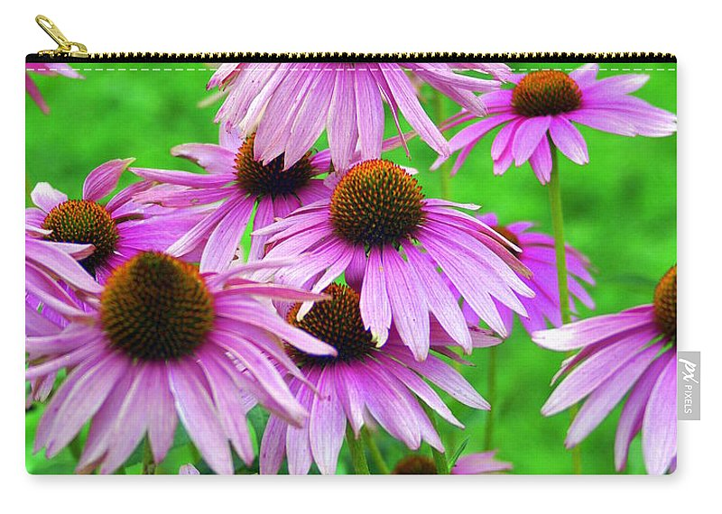 Flowers Carry-all Pouch featuring the photograph Pale Purple Coneflowers by Marty Koch