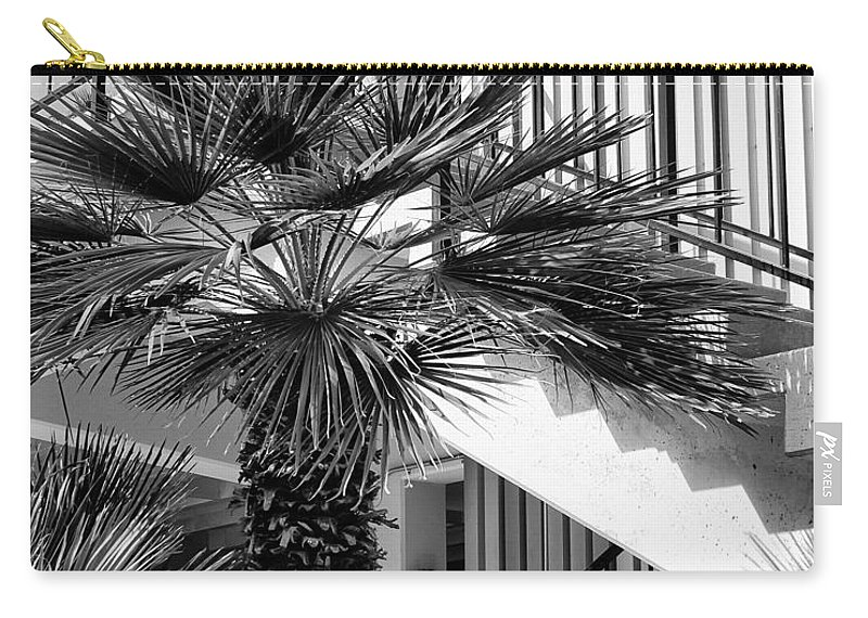 Palm Carry-all Pouch featuring the photograph Palm Chevron Palm Springs by William Dey