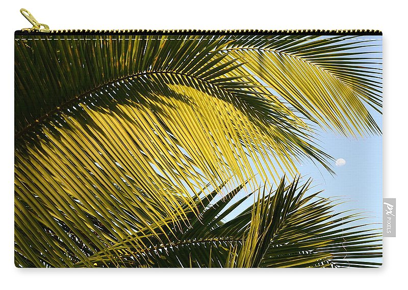 Palm Tree Carry-all Pouch featuring the photograph Palm Detail by Corinne Rhode