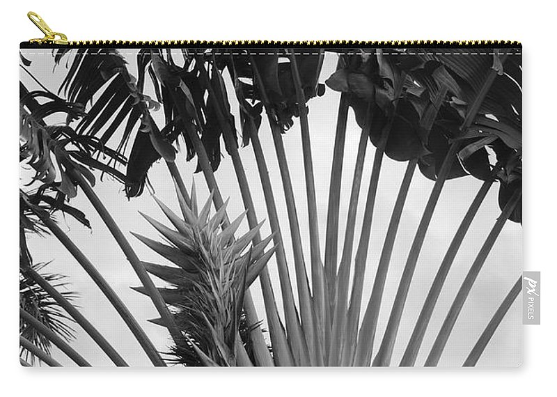 Macro Carry-all Pouch featuring the photograph Palm Frons by Rob Hans