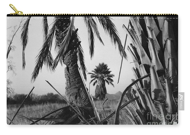 Black And White Photograpy Carry-all Pouch featuring the photograph Palm In View Bw Horizontal by Heather Kirk
