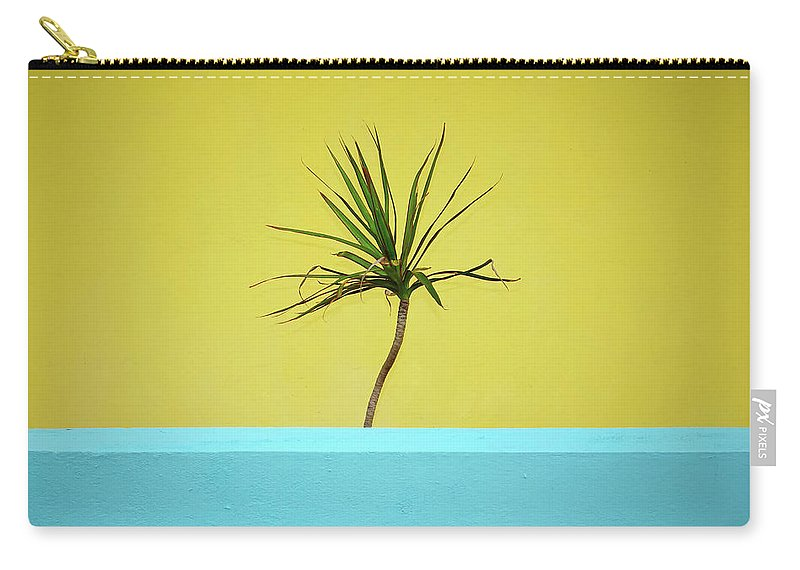 Blue Carry-all Pouch featuring the photograph Palm On Porch by MotionOne Studios