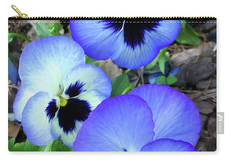 Flowers Carry-all Pouch featuring the photograph Pansies 0823 by Guy Whiteley