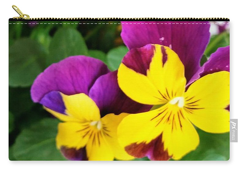 Pansies Carry-all Pouch featuring the photograph Pansies 2 by Valerie Josi