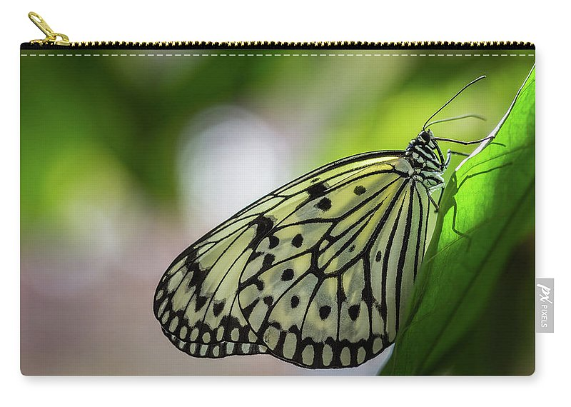 Paper Kite Butterfly Carry-all Pouch featuring the photograph Paper Kite Butterfly- 2 by Calazone's Flics