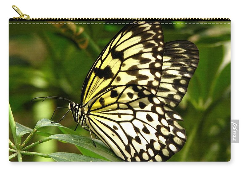 Paper Kite Butterfly Carry-all Pouch featuring the photograph Paper Kite by J M Farris Photography