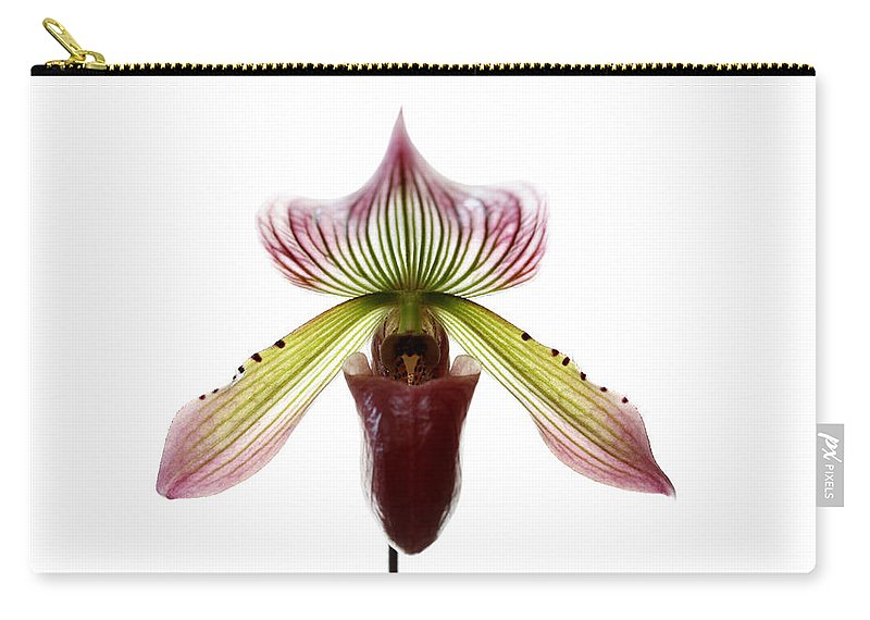 Orchid Carry-all Pouch featuring the photograph Paphiopedilum Lawrenceanum by Marilyn Hunt