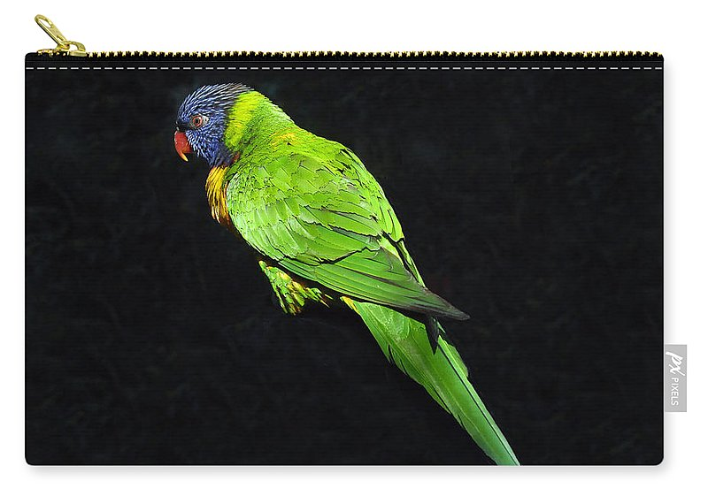 Parrot Carry-all Pouch featuring the photograph Parrot In Black by David Lee Thompson