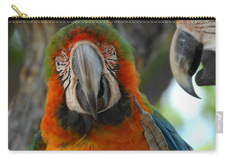Parrot Carry-all Pouch featuring the photograph Parroting Information by Donna Blackhall