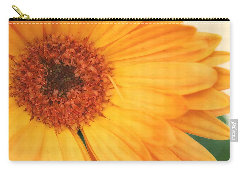 Flowers Carry-all Pouch featuring the photograph Partly Sunny by Linda Sannuti