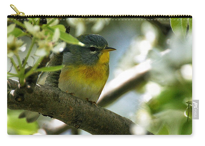 Wildlife Carry-all Pouch featuring the photograph Parula In A Pear Tree by William Selander