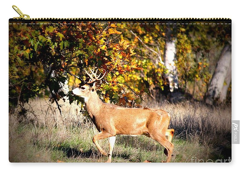 Animal Carry-all Pouch featuring the photograph Passing Buck In Autumn Field by Carol Groenen