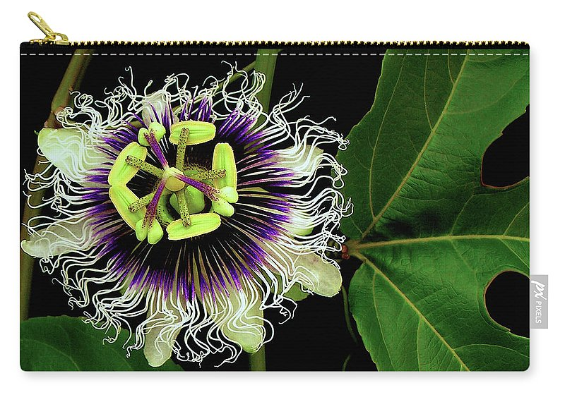 Hawaii Iphone Cases Carry-all Pouch featuring the photograph Passion Flower by James Temple