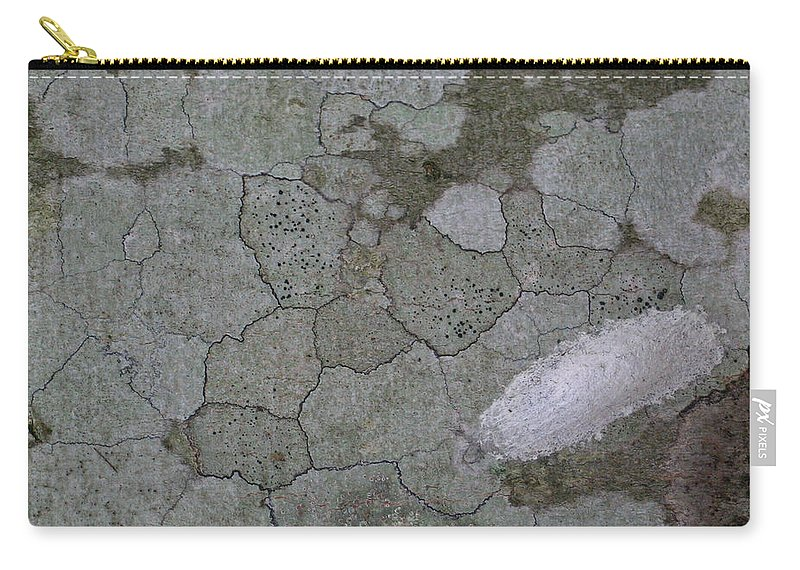 Grey Carry-all Pouch featuring the photograph Patches Of Grey And Life by Douglas Barnett