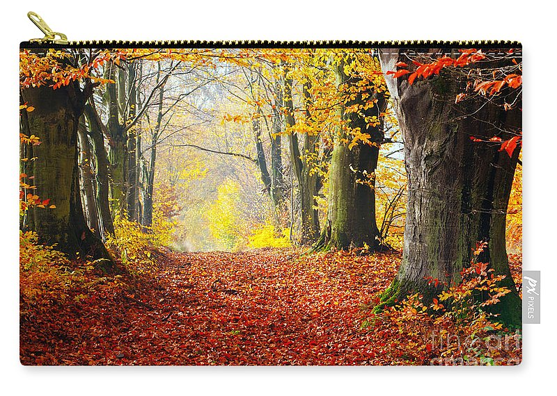 Autumn Carry-all Pouch featuring the photograph Path Of Red Leaves Towards Light In Fall Forest by Michal Bednarek