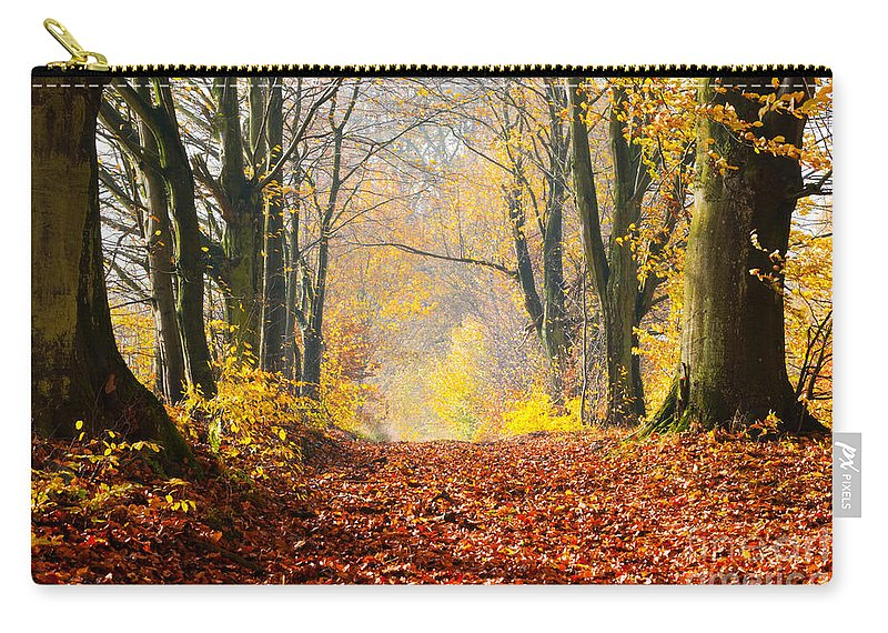 Autumn Carry-all Pouch featuring the photograph Path Of Red Leaves Towards Light by Michal Bednarek