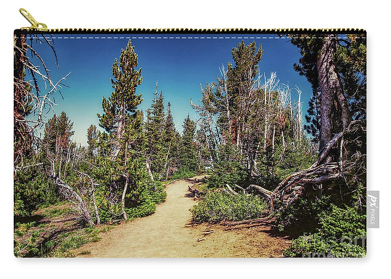 Carry-all Pouch featuring the photograph Path On Top Of Mt. Howard, Wallowa Or by Marcia Darby
