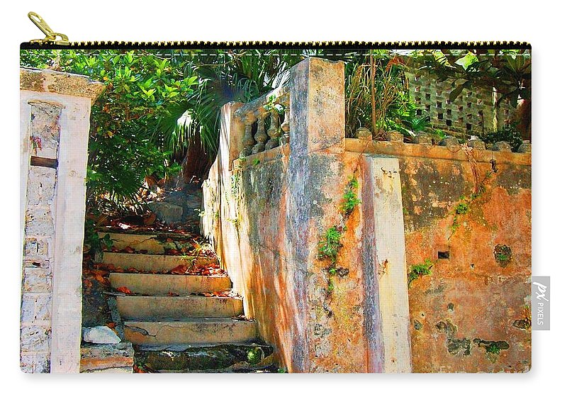 Steps Carry-all Pouch featuring the photograph Pathway by Debbi Granruth