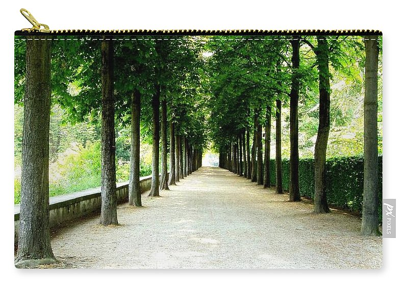 Path Carry-all Pouch featuring the photograph Pathway by Deborah Crew-Johnson