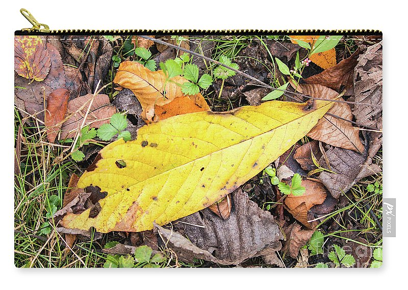 Asimina Triloba Carry-all Pouch featuring the photograph Paw Paw Leaf Fall Colors by Edie Ann Mendenhall