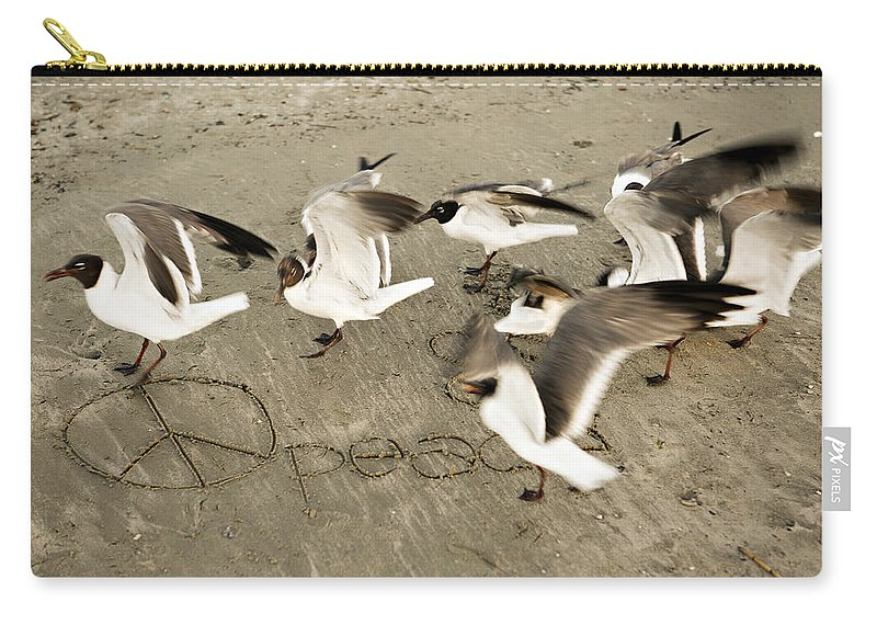 Bird Carry-all Pouch featuring the photograph Peace Dance by Marilyn Hunt