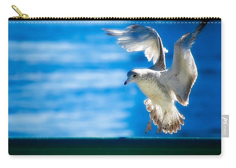 Animal Carry-all Pouch featuring the photograph Peace Gull by Rich Leighton