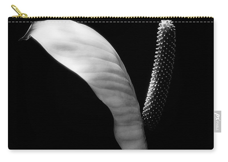 Carry-all Pouch featuring the photograph Peace Lilly by Marilyn Hunt
