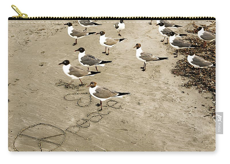 Americana Carry-all Pouch featuring the photograph Peace On The Beach by Marilyn Hunt