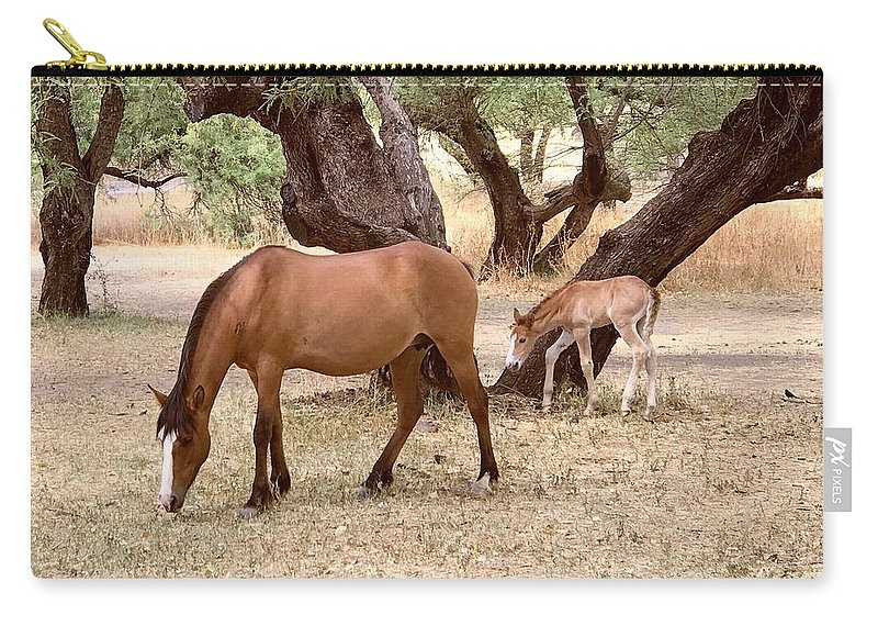 Wild Horses Carry-all Pouch featuring the photograph Peacefully Grazing by Barbara Zahno