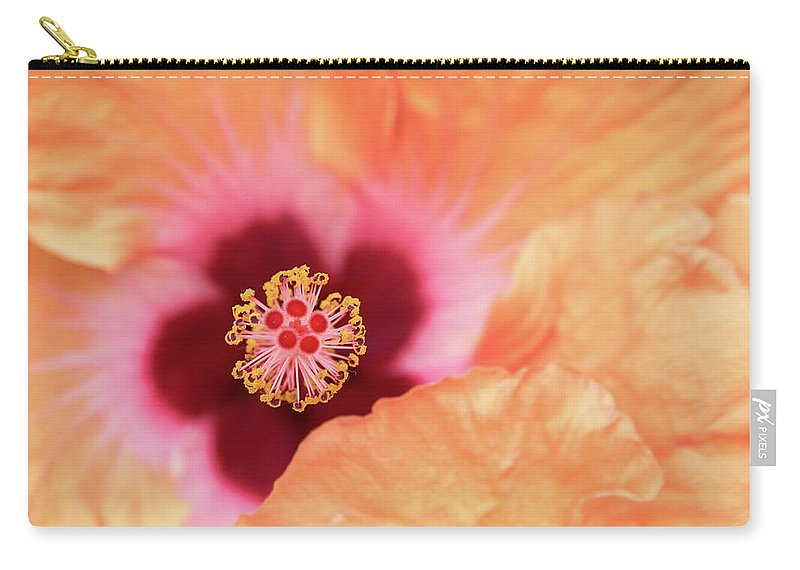 Hibiscus Carry-all Pouch featuring the photograph Peach Hibiscus - Macro by Connie Mitchell