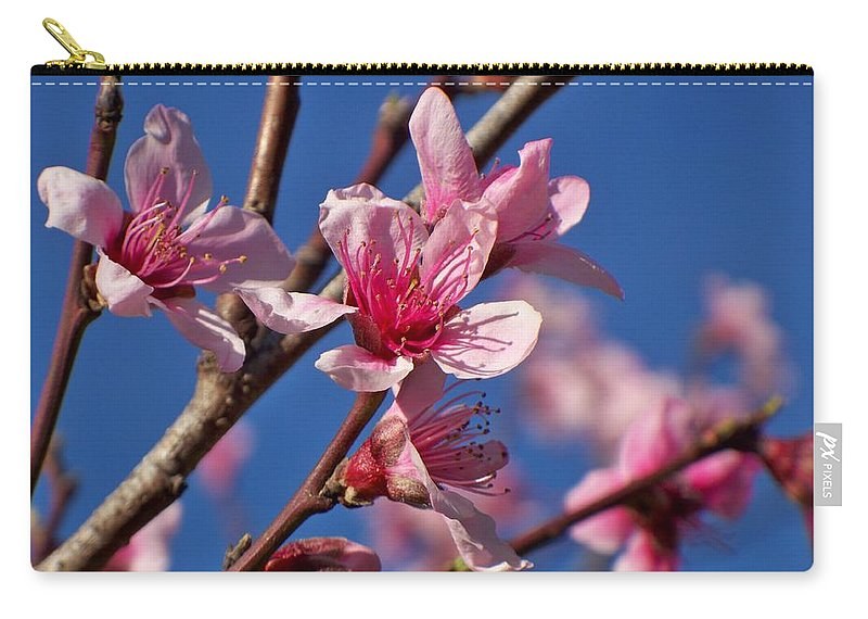 Peach Carry-all Pouch featuring the photograph Peach Tree Blossoms by Betty Northcutt