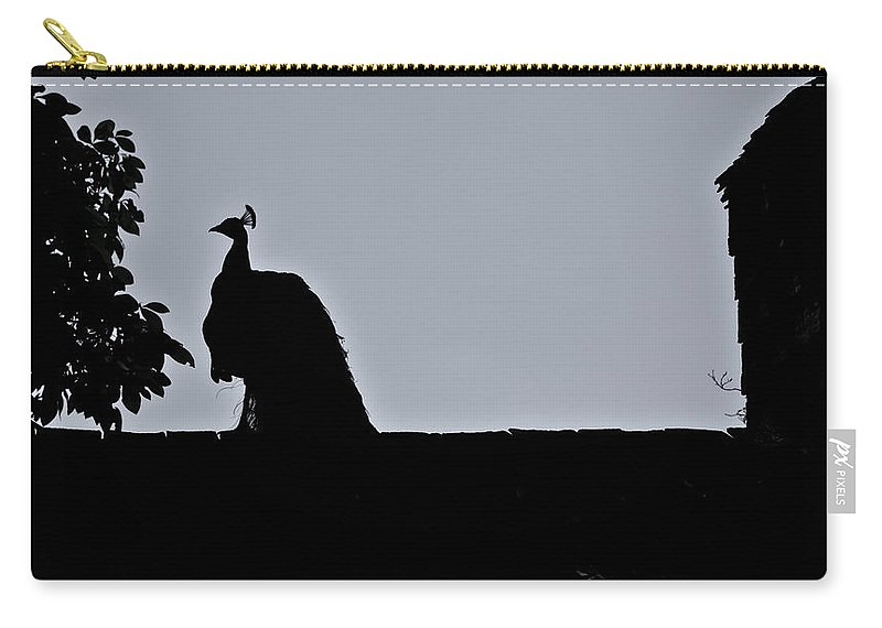 Peacock Carry-all Pouch featuring the photograph Peacock At Night by Douglas Barnett