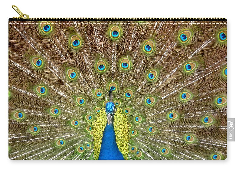 Peacock Carry-all Pouch featuring the photograph Peacock by David Lee Thompson