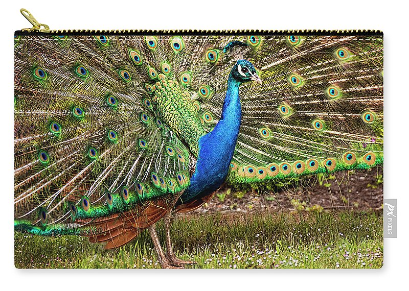 Peacock Carry-all Pouch featuring the photograph Peacock In Beacon Hill Park by Peggy Collins