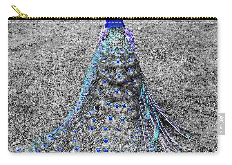 Peacock Carry-all Pouch featuring the photograph Peacock Plumage by Julia Raddatz