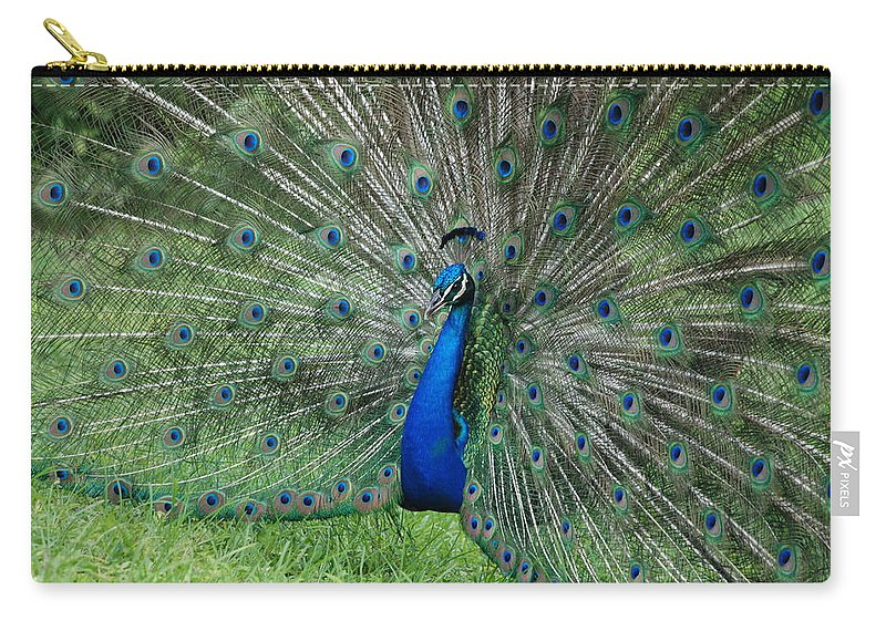 Peacock Carry-all Pouch featuring the photograph Peacocks Glory by Rob Hans