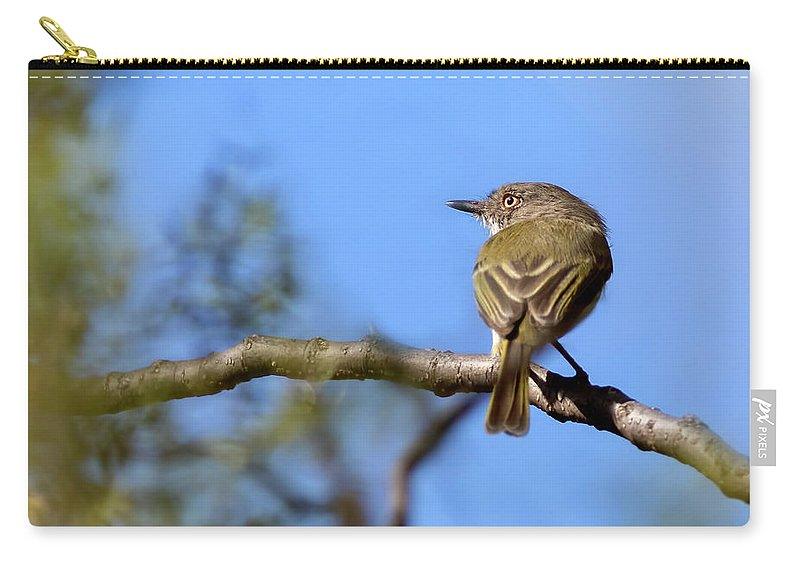 Bird Carry-all Pouch featuring the photograph Pearly-vented Tody-tyrant by Pablo Rodriguez Merkel
