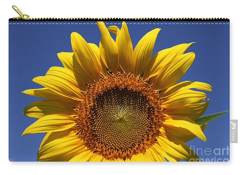 Sunflowers Carry-all Pouch featuring the photograph Peek A Boo by Amanda Barcon