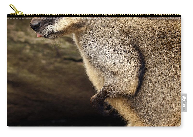 Wallaby Carry-all Pouch featuring the photograph Peeking At The World by Mike Dawson