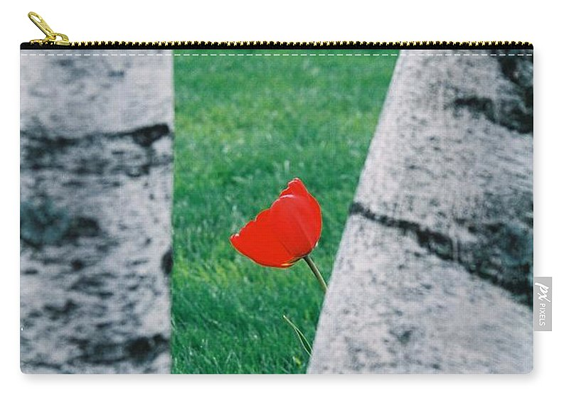Tulip Carry-all Pouch featuring the photograph Peeking Tulip by Lauri Novak