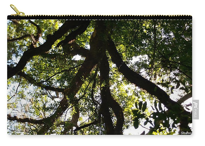 Shannon Carry-all Pouch featuring the photograph Peeks Of Sun Rays by Shannon Sears