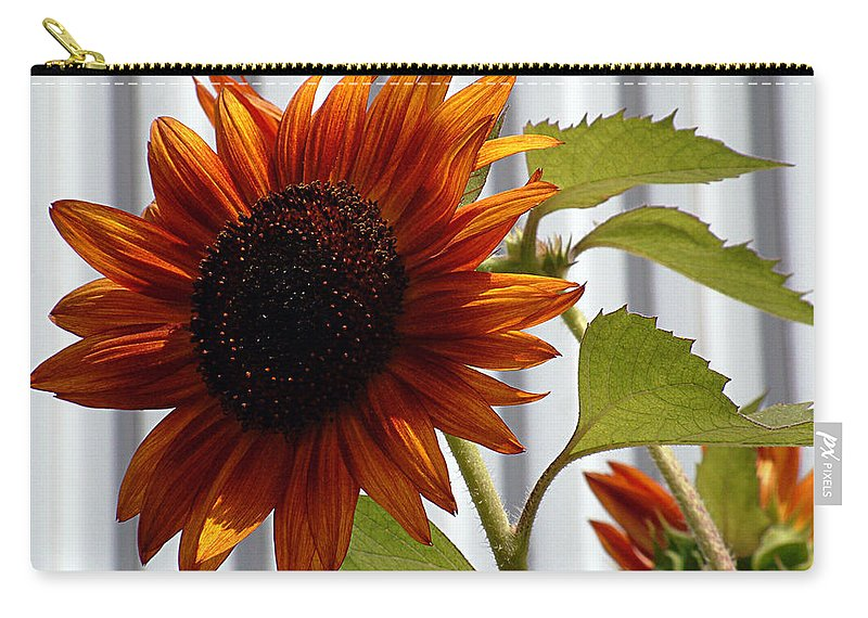Brown Carry-all Pouch featuring the photograph Peerless by RC DeWinter
